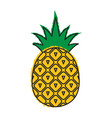 pineapple icon tropical fruit vector image vector image