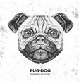 retro hipster animal pug-dog hand drawing muzzle
