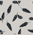 seamless pattern with hand drawn stylized calathea vector image vector image