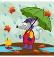 mouse in rain autumn vector image