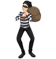 A male robber vector image vector image
