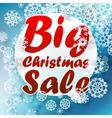 Christmas Big sale template vector image vector image