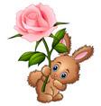 cute little rabbit cartoon holding a flower vector image