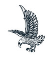 eagle on white background design element or vector image vector image