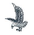 eagle on white background design element vector image vector image
