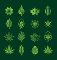 leaf icons on dark background vector image vector image