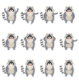 Set of flat racoon icons vector image vector image