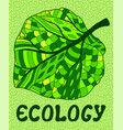 with green leaf and letter ecology vector image