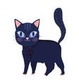black cat cartoon feline character pets vector image vector image