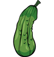 cucumber vegetable cartoon vector image vector image