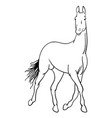 horse line art 01 vector image