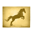 Ink Splashes Horse At Vintage Paper vector image vector image