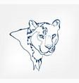 leopard animal wild one line design vector image vector image
