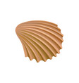 scallop seashell of mollusk colorful marine item