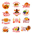 thanksgiving day autumn holiday greeting cards vector image