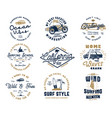 vintage surfing graphics set and emblems for web vector image vector image
