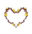 Bastard Teak Flowers in A Heart Shape vector image vector image