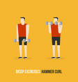 bicep exercises vector image