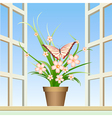 butterfly and window plant