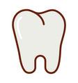 human body tooth anatomy organ health line vector image vector image