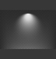 spotlight effect on transparent background vector image vector image