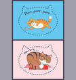 two posters with nice cats vector image vector image