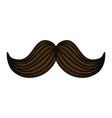 vintage male mustache vector image