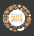 background with nuts arranged in a circle vector image vector image