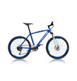 blue color bicycle vector image vector image