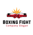 Boxing Fight Design vector image