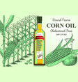 corn oil brand ads poster banner template vector image vector image
