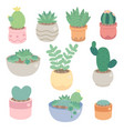 cute minimal cactus and succulent in pot vector image vector image