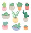 cute minimal cactus and succulent in pot vector image