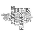 flower bulbs nature s greatest gift text vector image vector image
