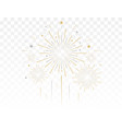 gold fireworks vector image vector image