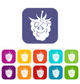 ripe fresh smiling raspberry icons set flat vector image vector image