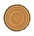 texture of sawn wood brown object tree vector image