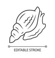 triton linear icon large mollusk with spiral vector image vector image