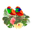 tropical birds on a branch bouquet tropical flower vector image vector image
