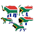 Big Five South Africa vector image vector image
