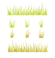 Collection of grass templates - green and yellow vector image vector image