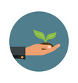 icon of green sprout in a hand sign of vector image