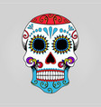 mexican skull skeleton cartoon vector image vector image