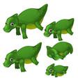nice set waterfowl animated animal isolated on vector image vector image