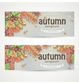 Set of two horizontal banners with the image of vector image vector image