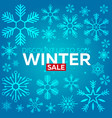 winter sale poster with snowflakes blue background vector image vector image