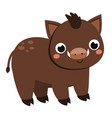 cute boar cartoon forest pig animal isolated on vector image