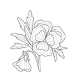 Pansy Flower Monochrome Drawing For Coloring Book vector image vector image