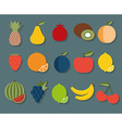 Fruit icon The image of fruits and berries symbol vector image vector image