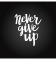 Hand drawn phrase Never give up vector image vector image